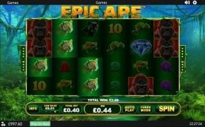 Epic Ape Win